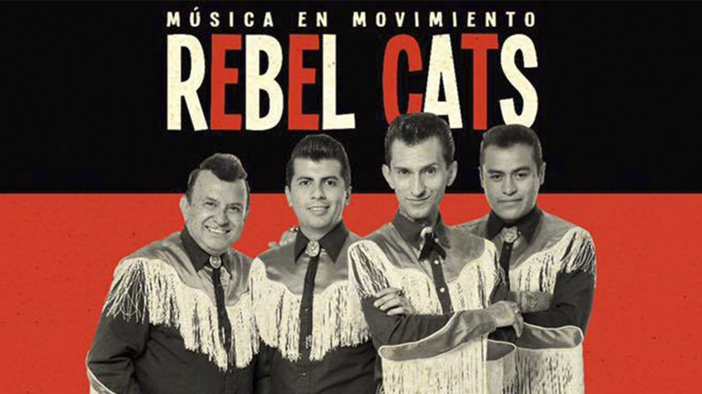 Rebel Cats en Oaxaca